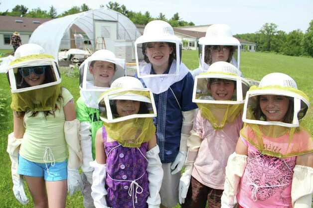 Bees find a sixth-grade advocate - Times Unioneast nassau village