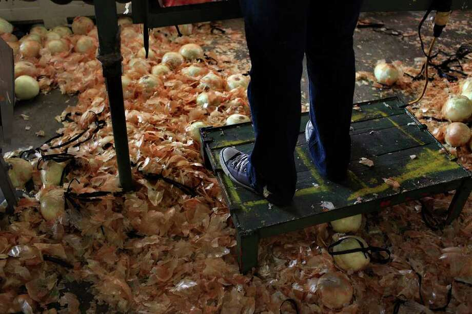 Workers sort onions imported from Mexico, bound for the East Coast, at Progreso Produce in Pharr in April. Photo: Lisa Krantz/Express-News / SAN ANTONIO EXPRESS-NEWS
