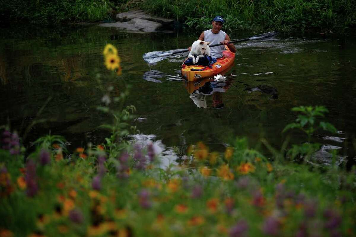 Tom Melee and his dog, Wigger, paddle on the Mission Reach portion of the San Antonio River to find out if it is accessible by canoe or kayak on Saturday, May 21, 2011. The San Antonio River Authority organized the trial run.