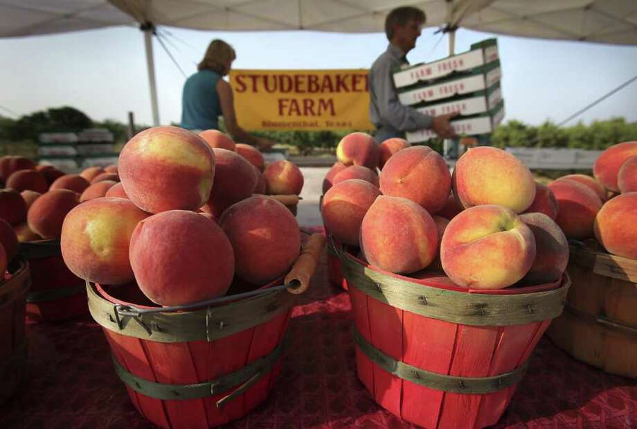 Metro - Russ and Lori Studebaker set up fresh produce to be sold at their farm fruit and vegetable stand on HWY 290 just outside Fredericksburg.  Monday, June 6, 2011.   Photo Bob Owen/rowen@express-news.net Photo: BOB OWEN, SAN ANTONIO EXPRESS-NEWS / rowen@express-news.net