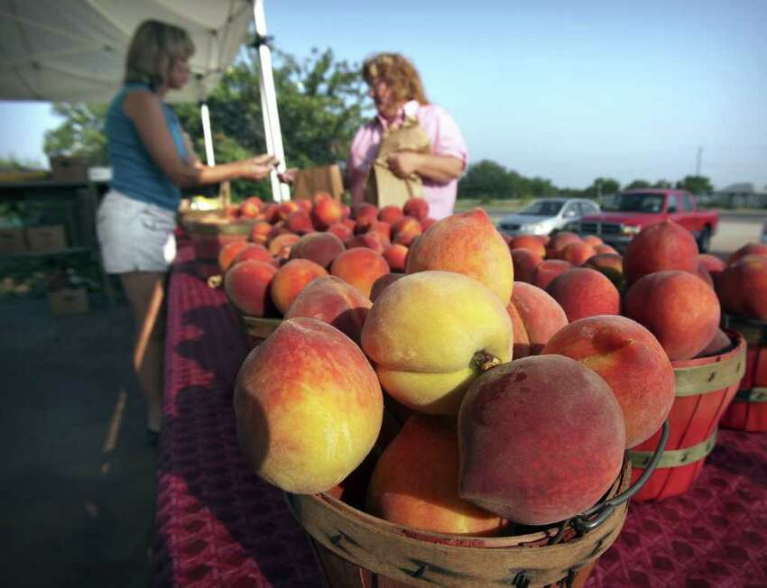 Metro - Peaches sit ready for sell as Lori Studebaker, left, sells a basket to Dawni Nelson from New Mexico, at the Studebaker Farm roadside stand on HWY 290 just outside Fredericksburg. Monday, June 6, 2011. Photo Bob Owen/rowen@express-news.net