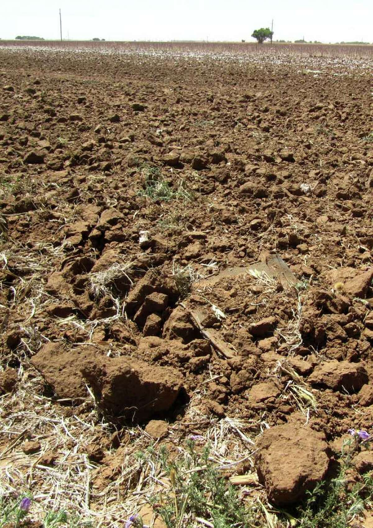 In this May 19, 2011, photo are clumps of dirt in a drought-hardened field near Lubbock, Texas. Meteorologists blame the conditions on La Nina, a cooling of the Pacific waters near the equator. It¿s caused extreme drought in Texas and parts of Oklahoma, Louisiana and New Mexico.