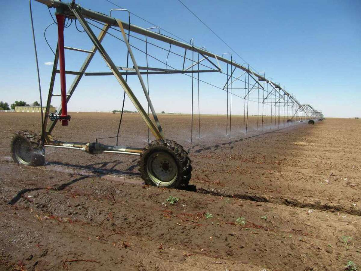 In this May 19, 2011 photo an above ground irrigation system makes its way across a cotton field near Lubbock, Texas. Irrigation systems are one way some of farmers are overcoming drought conditions as planting continues in the Texas' South Plains.
