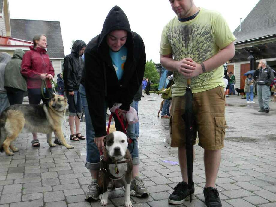 Were you Seen at the Paws in the Park benefit at The Crossings in Colonie Saturday? Photo: Frank Aguardo / Special To The Times Union