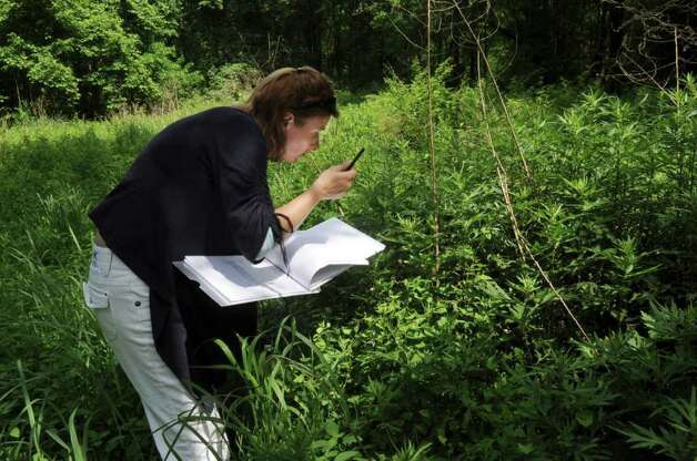 aleksandra moch greenwich 39 s environmental analyst making notes about