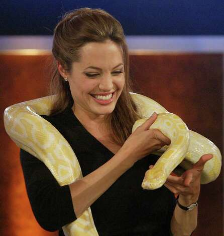 Actress Angelina Jolie smiles whild holding a snake on her shoulders during the German television show 'Wetten Dass...?' ('Bet It...?') in Leipzig, Germany, in 2004. Photo: Associated Press File Photo / POOL REUTERS