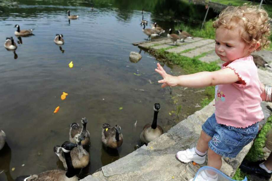 DERBYEnjoy a nature walk Osbornedale State Park on Sunday, June 8, from 3 to 4:30 p.m.Click here for more info. Photo: Autumn Driscoll / Connecticut Post