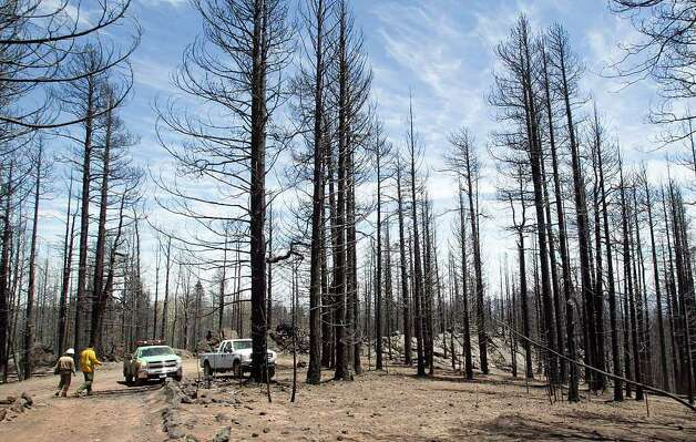 ... dry patches of forest from several wildfires burning throughout the