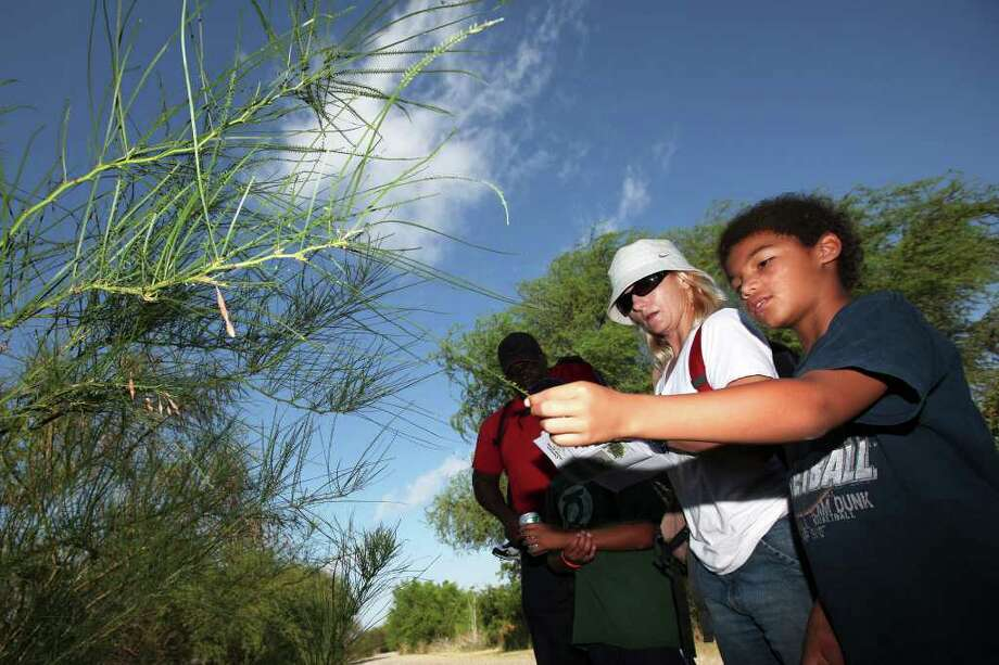 Bryce, right, and Sara Dixon inspect a retama plant as the Dixon family participates in the Alamo Area Nature Challenge at the Mitchell Lake Audubon Center on June 18, 2011.  ANDREW BUCKLEY / abuckley@express-news.net Photo: ANDREW BUCKLEY / abuckley@express-news.net