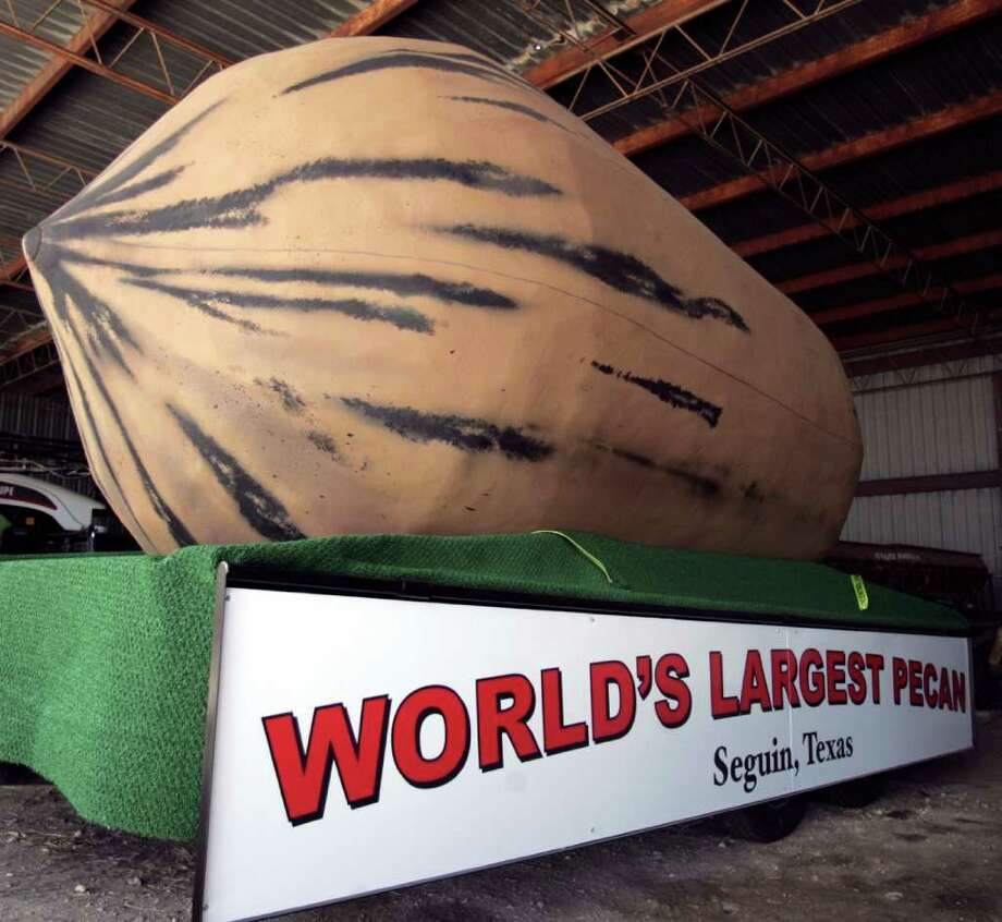 The world's largest pecan will roll into the public spotlight during Monday's July 4 parade in Seguin. And no, the nut is not real. OMAR PEREZ/operez@express-news.net Photo: OMAR PEREZ, Omar Perez/operez@express-news.net / SAN ANTONIO EXPRESS-NEWS