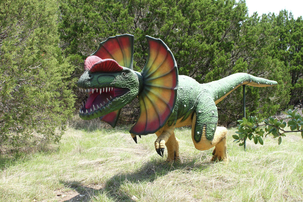 Stroll among life-size models of dinosaurs at Dinosaur World. KATHLEEN SCOTT / SPECIAL TO THE EXPRESS-NEWS