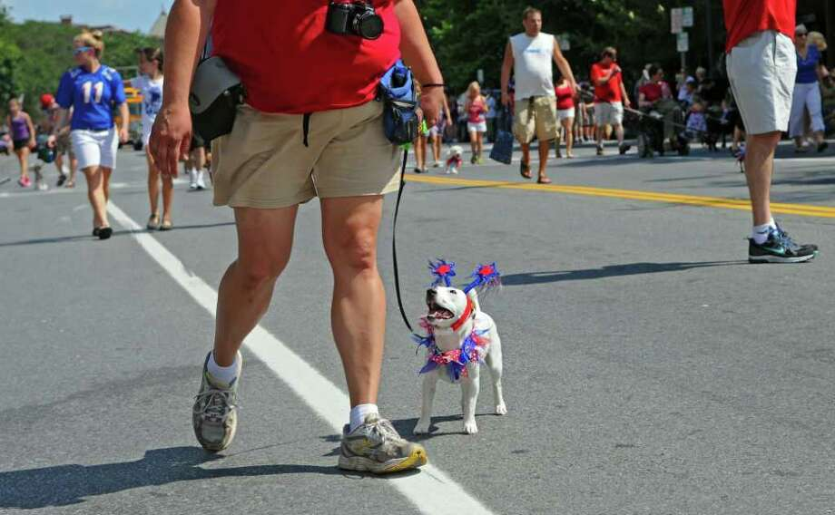 "Joann Verderosa walks with Vinny, her 2 year old Jack Russell Terrier on Broadway during the All-American Parade & ""Patriotic Pooch"" during the Saratoga All-American Celebration on Monday July 4, 2011 in Saratoga Springs, NY.    ( Philip Kamrass /  Times Union) Photo: Philip Kamrass / 00013769A"