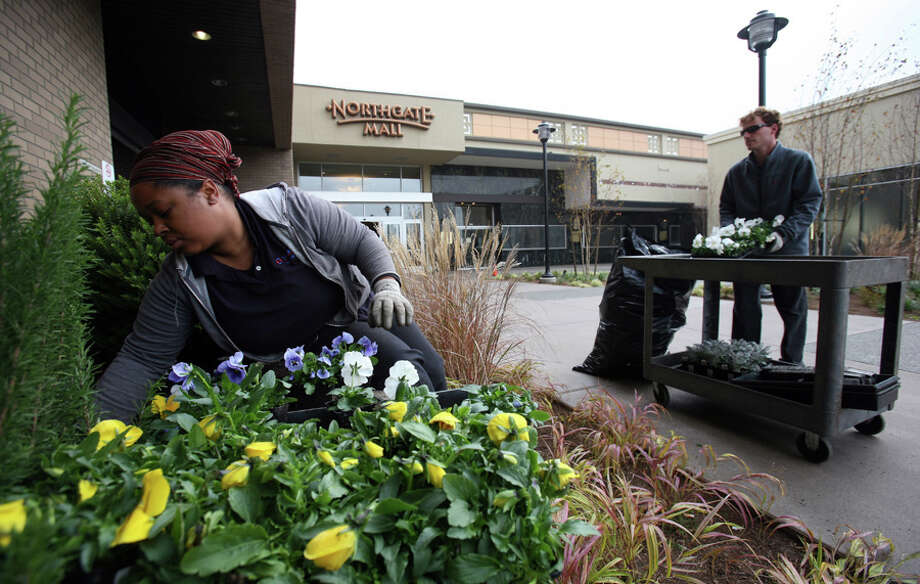 On Tuesday, Nov. 6, 2007 Nichole Payne and Daniel Lorenson planted pansies in one of the plaza entrances to Northgate Mall, which that weekend completed a two-year expanison and renovation.