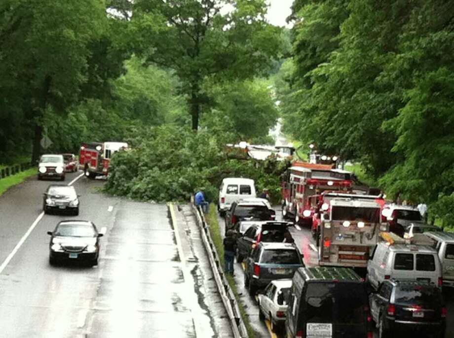 A state Department of Transportation review of three accidents caused by falling trees on the Merritt Parkway in the past two weeks determined that two of the three trees were in healthy condition and the third is still being looked at. A falling tree killed a Massachusetts man in Stamford on June 23. Photo: File Photo / Stamford Advocate File Photo
