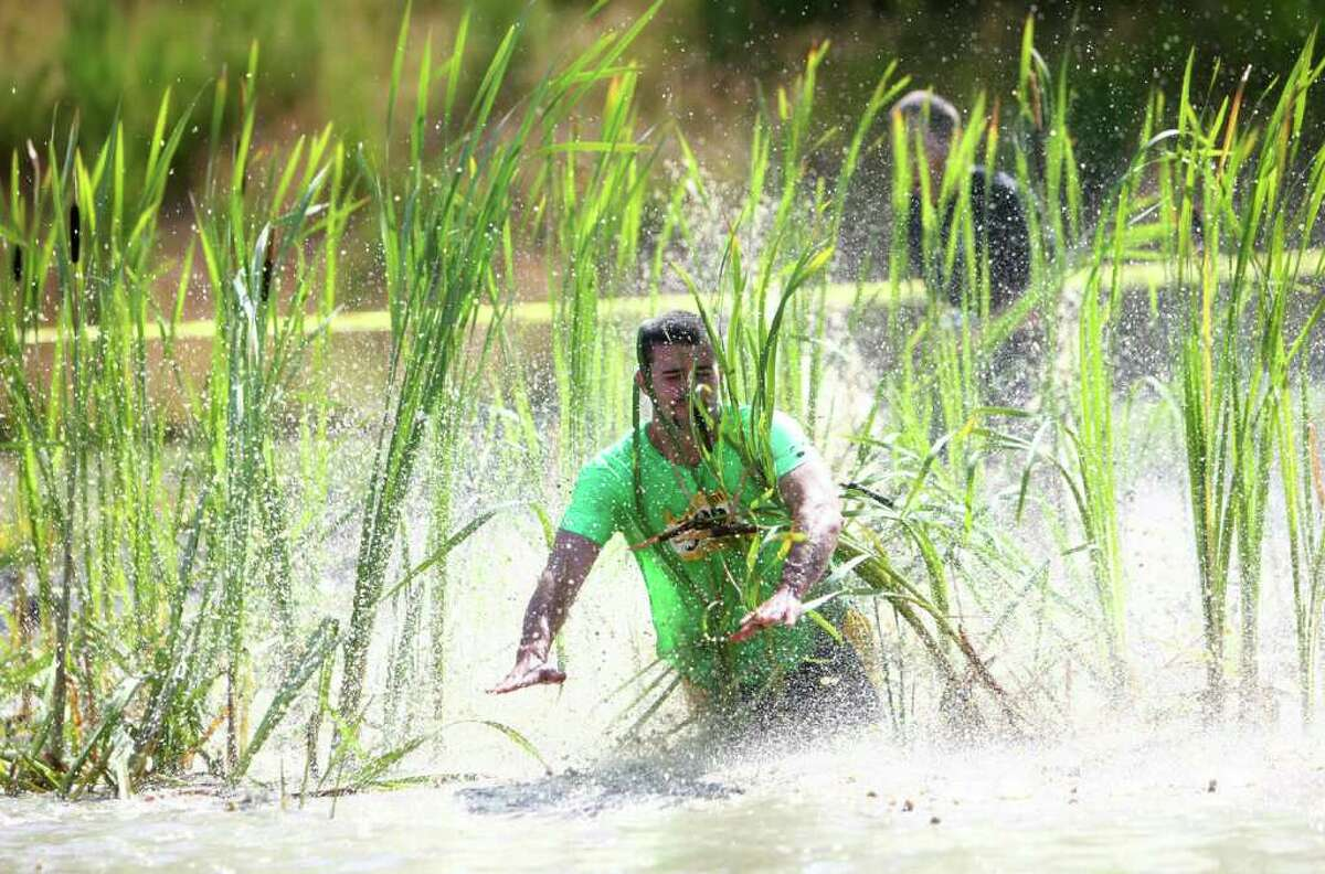 A participant collides with cattails in a pond during the Dirty Dash Seattle 10k mud run.