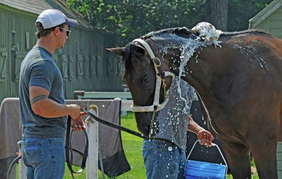 Uncle Mo, the Two Year Old Champion thoroughbred of 2010 gets a cooling bath from his groom Martin Esparada after his plane trip from Louisville Airport after he arrived at the Oklahoma Training Center in Saratoga Springs, N.Y. July 11, 2011.  He is held by assistant to trainer Todd Pletcher, Whit Beckman.   (Skip Dickstein / Times Union) Photo: SKIP DICKSTEIN