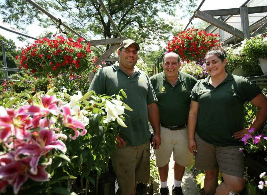 Ganim Family Fills Fairfield Home Gardens With Plants Veggies And Even Grass Sfgate