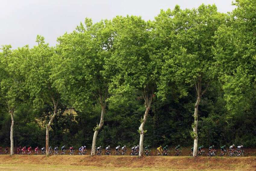 The peloton make their way through the French countryside during stage eleven of the 2011 Tour de France from Blaye-Les-Mines to Lavaur on July 13, 2011 in Lavaur, France.