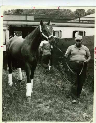 Alydar, the rival of 1978 Triple Crown winner Affirmed, is led off the horse van on July 29, 1978. Alydar would beat Affirmed in the Travers Stakes, but got the win via disqualification. (Times Union Archives)