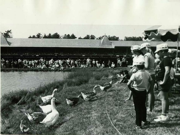 Yes, the infield used to be open for people -- and geese. It looks as though the New York Racing Association had a giveaway on this day. Check out the painter hats everyone is wearing. (Times Union Archives)