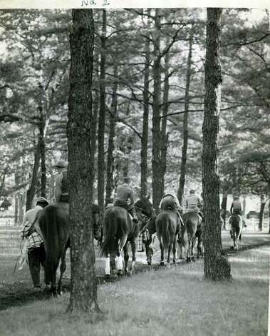 A group of horses make their way towards the main track on the Saratoga backstretch on July 31, 1941. Some things just never change. (Times Union Archives)