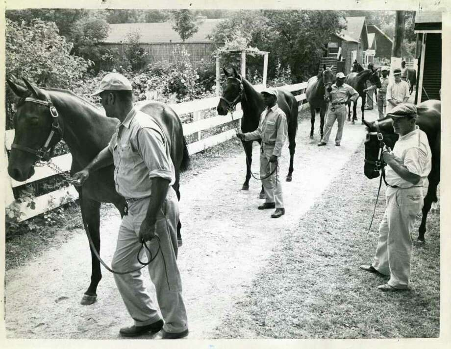 Horses are getting ready to go to the track from the barn area in a photo that is undated. (Times Union Archives)