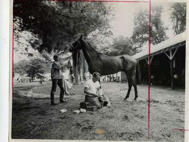 A horse gets a new pair of shoes from a blacksmith on the backstretch of Saratoga Race Course in August of 1969.  (Times Union Archives)