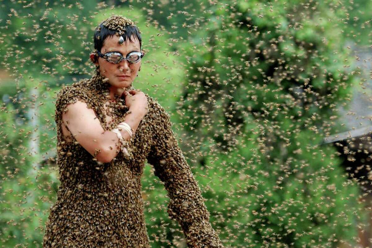 """Wang Dalin was the winner of a """"bee bearding"""" competition held in Shaoyang City, Hunan Province, China on Sunday. Dressed only in shorts and wearing goggles and nose plugs for protection, Dalin was able to attract 26.86kg of bees onto his body. Close competitor Lu Kongjiang could only manage 23kg."""