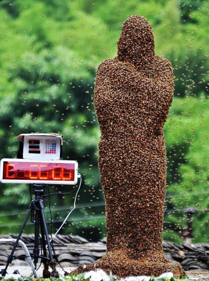 In this photo released by Xinhua News Agency, 42-year-old beekeeper Wang Dalin is covered with bees during a contest against 20-year-old Lu Kongjiang, also a beekeeper, in Longhui County of Shaoyang City, central China's Hunan Province, Sunday, July 17, 2011. Wang finally won in the hour-long duel since 26 kilograms (57 pounds) of bees covered his body, Xinhua said. (AP Photo/Xinhua/Lu Jianshe) NO SALES Photo: AP