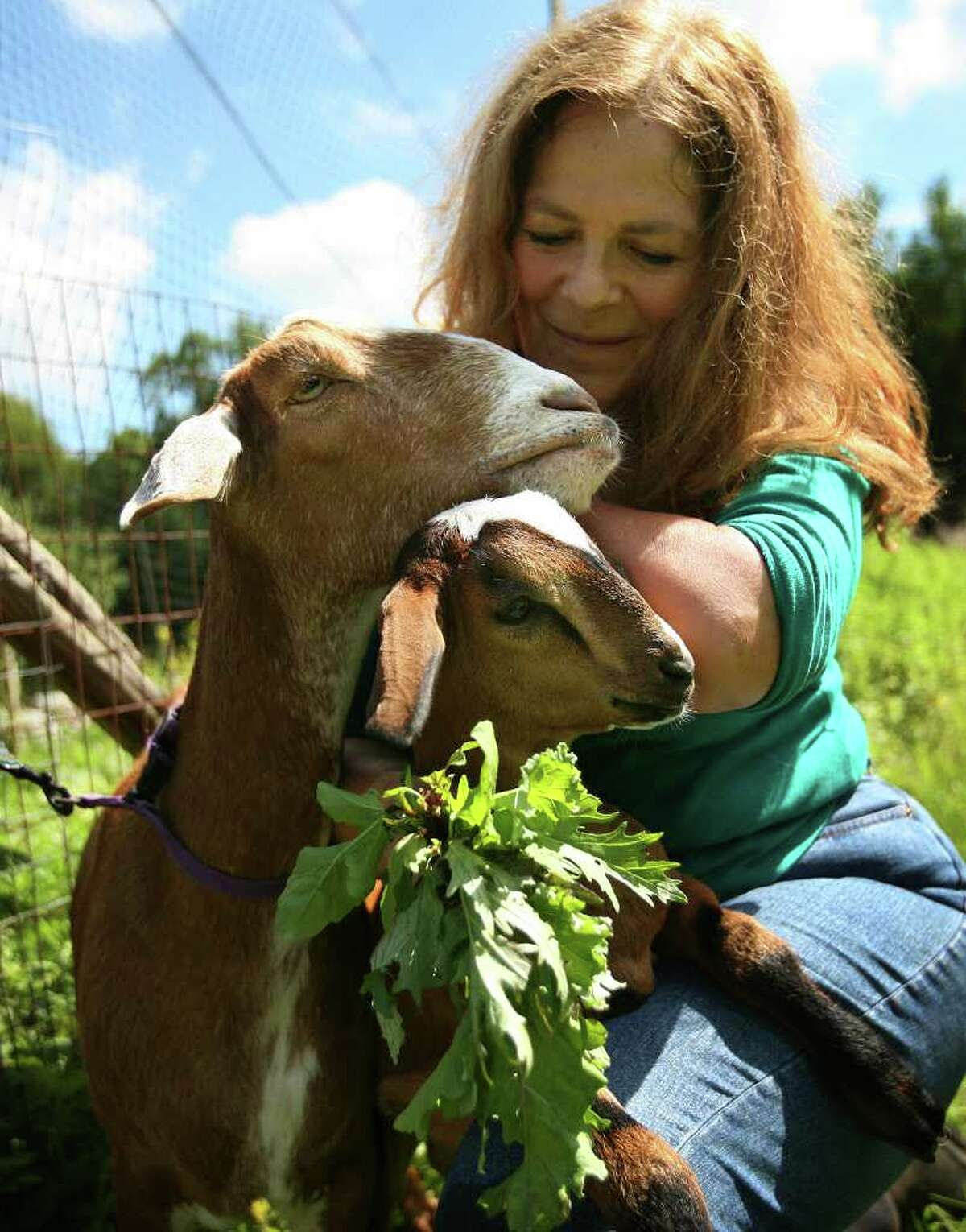 Nancy Burton of Redding with mother Cindy-Lu and baby Zig-zag, born this spring on her goat farm in Redding. Burton says that milk from her goats has tested positive for radioactivity, which she surmises is from the Indian Point nuclear plant in nearby New York state.