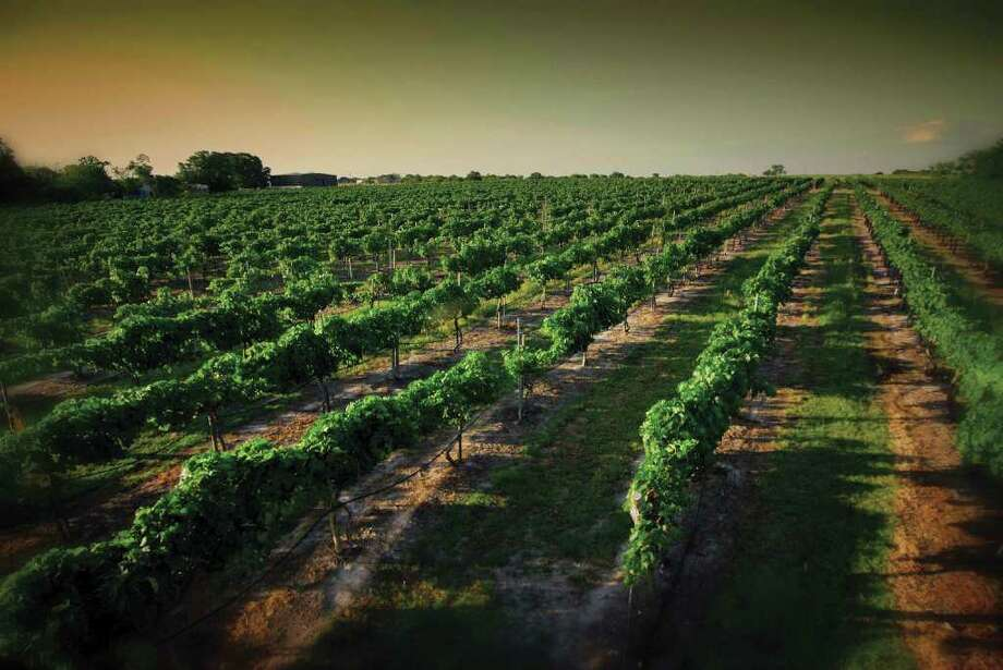 "Messina Hof Winery and Resort in Bryan is among the wineries profiled in ""Spectacular Wineries of Texas."""
