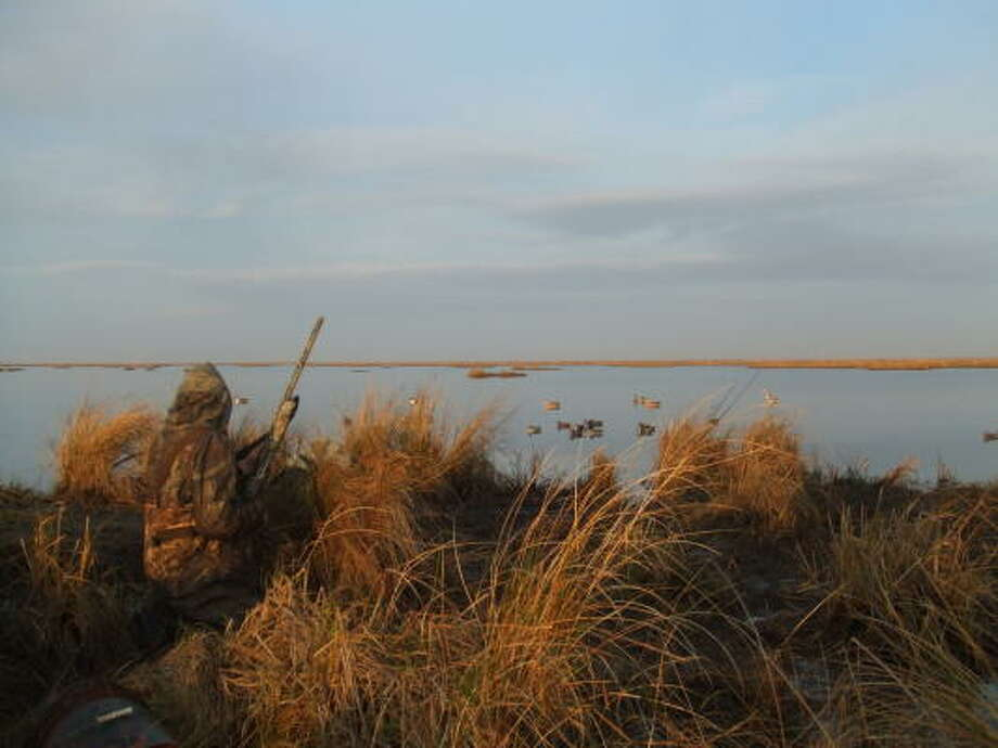 A camo clad teal hunter waits for teal to fly over at the Pace Tract of Anahuac NWR. Conditions are looking good for a successful early teal season which lasts until Sept. 24. Photo: Anahuac NWR