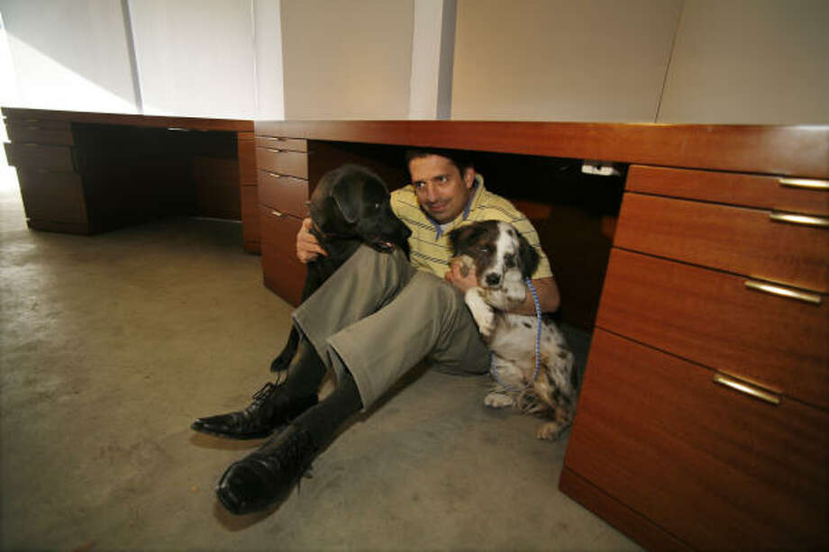 Sean Hawkins, founder and president of Saving Animals Across Borders, joins dogs Mabel and Maggie under Ken Lay's desk. Enron had a track record of supporting animal-welfare groups, Hawkins said. Photo: Steve Ueckert, Chronicle File