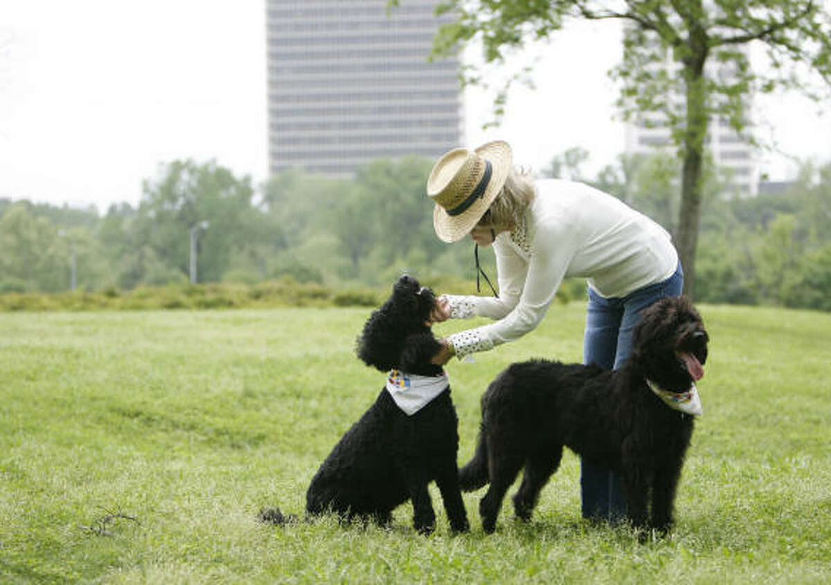 Joanne Herring plays with her dogs Chulo and Jezabelle in a park near home.