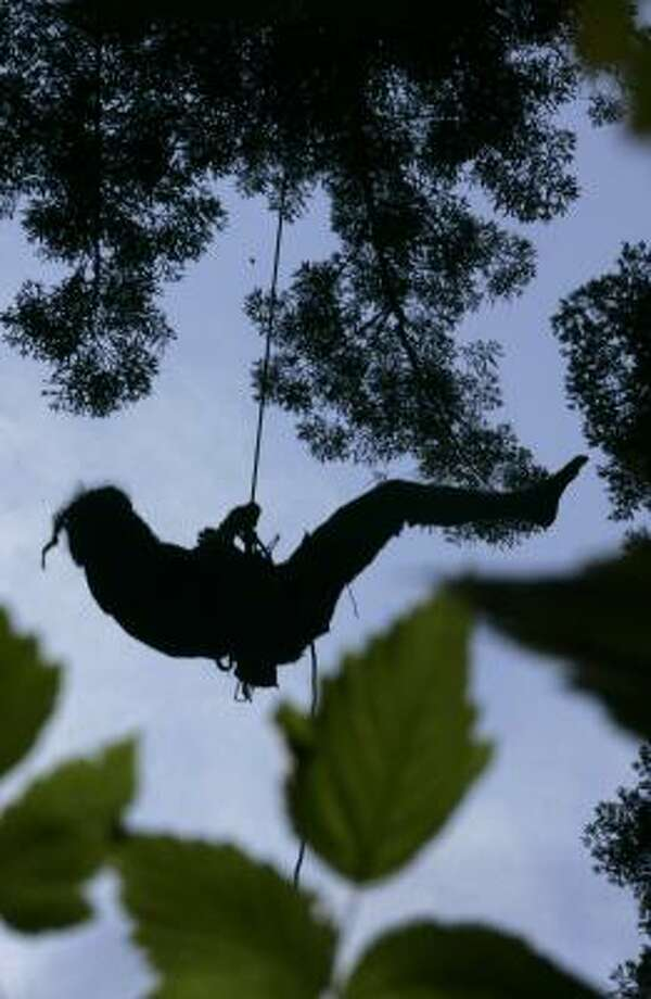 Billy Stoetzer, a 22-year-old from the Missouri Ozarks, rappels down a redwood tree in Scotia, Calif., on Thursday. Photo: RICH PEDRONCELLI, AP