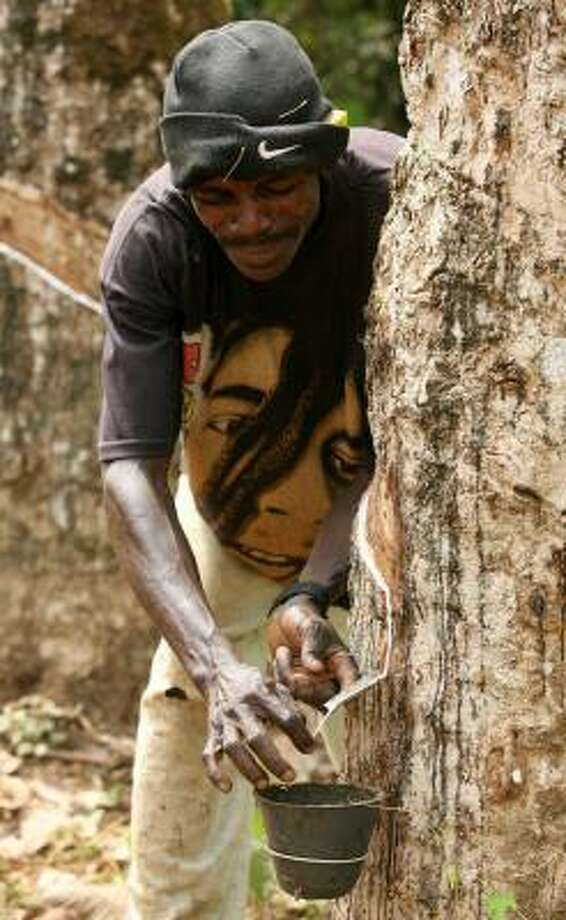 A worker taps latex at a rubber plantation in Guthrie, Liberia. Rubber is Liberia's first commodity to return to the export market in the war-racked country. Photo: GEORGE OSODI, ASSOCIATED PRESS