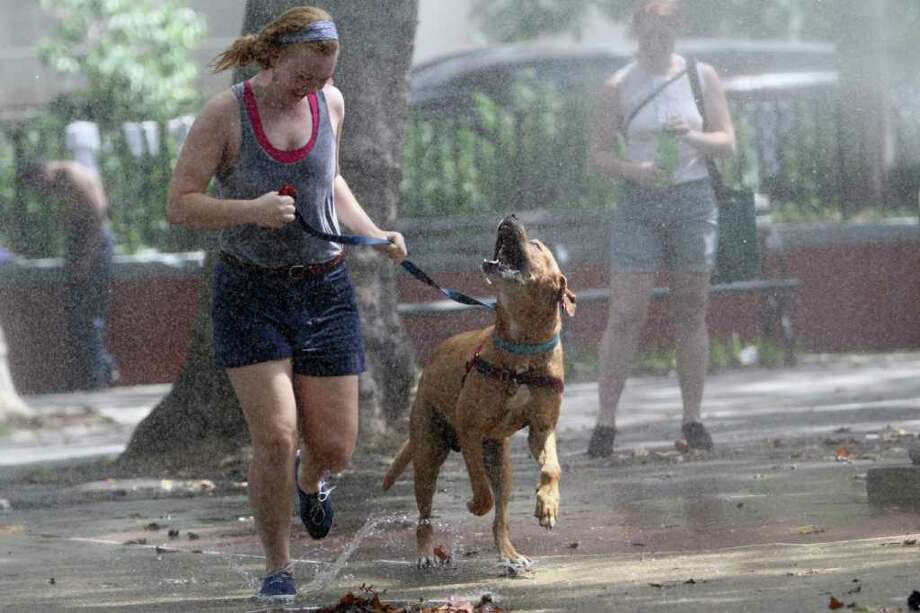 Teresa Smit and Clifford, a 4-year-old Mastiff Labrador mix, cool off by running through a sprinkler, Saturday, July 23, 2011 in New York. The National Weather Service said the temperature was 92 in Central Park at 10 a.m. Saturday. Friday's high was 104. (AP Photo/Mary Altaffer) Photo: Mary Altaffer