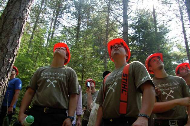 Students watch a 75-foot red pine come down on July 20, 2011 at the Adirondack Woodsmen's School at Paul Smith's College.  (Scott Waldman / Times Union) Photo: Scott Waldman