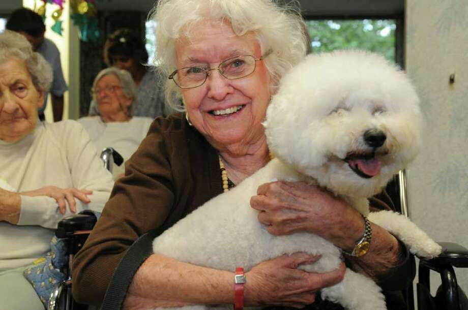 Mary Lancaster enjoys holding Poochie, a bichon frise owned by Anne Arslan of Greenwich, at the Nathaniel Witherell nursing home's Pooches on Parade program on Monday, July 25, 2011. Photo: Helen Neafsey