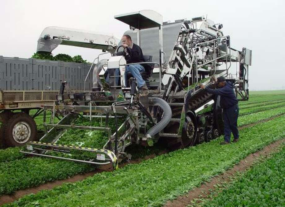 Ramsay Highlander technicians operate a mechanical harvester on a lettuce field in California's Imperial Valley. Farmers are looking to a new generation of fruit-picking robots and advanced tractors to replace immigrant workers. Photo: RAMSAY HIGHLANDER