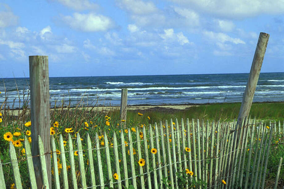 A beach in Galveston Island State Park. Photo: Texas Parks And Wildlife