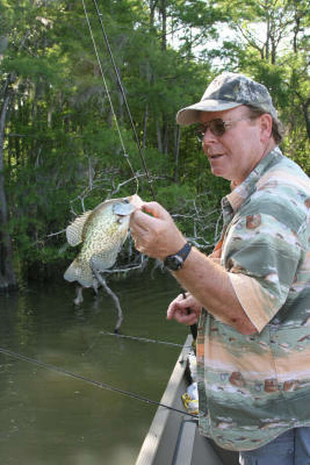 Crappie are the third most sought-after freshwater fish among Texas' million-plus inland anglers. Photo: Shannon Tompkins, Chronicle