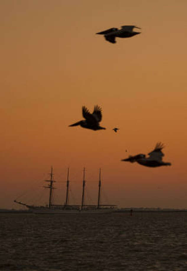 The Spanish navy tall ship Juan Sebastian de Elcano rides at anchor off Galveston Harbor before sunrise on Friday. It is open to the public this weekend. Photo: Smiley N. Pool, Chronicle