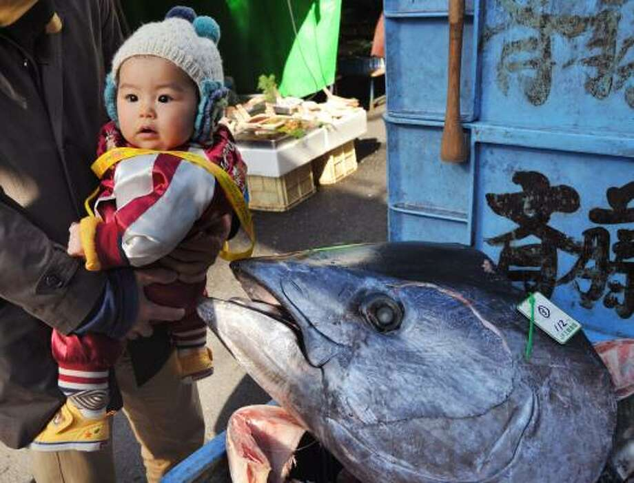 A shopper carries a toddler while looking at the head of a tuna in Tokyo's Tsukiji fish market on Friday. Japan consumes some 450,000 tons of tuna in a year, according to an industry group. Photo: KATSUMI KASAHARA, ASSOCIATED PRESS