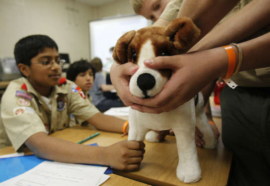 J.J. Ramamurthy, 13, left, of Sugar Land, holds on to his fake furry patient on Saturday as he tries to earn a veterinary medicine/dog care merit badge. Photo: Melissa Phillip, Chronicle