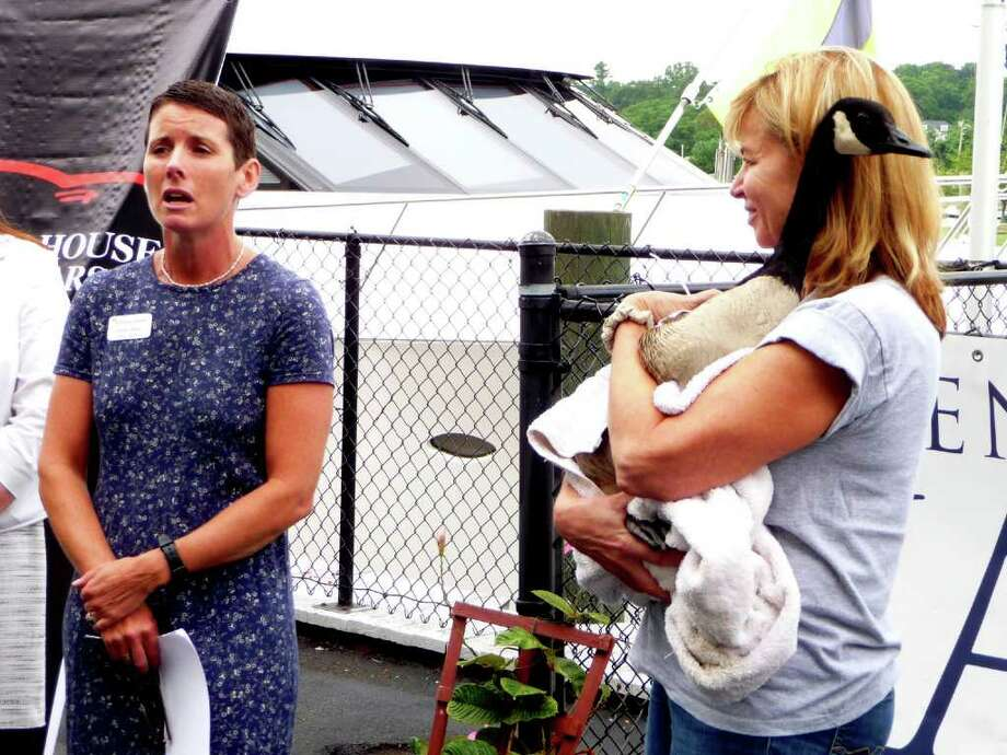 Karen Dixon, director of the Greenwich Audubon Center, left, describes how the Yacht Showcase will support wildlife conservation efforts in Long Island Sound, while Amy Jener, a volunteer at Wildlife in Crisis, holds a rescued Canada Goose on Tuesday, July 26, 2011. Photo: Albert Yuravich