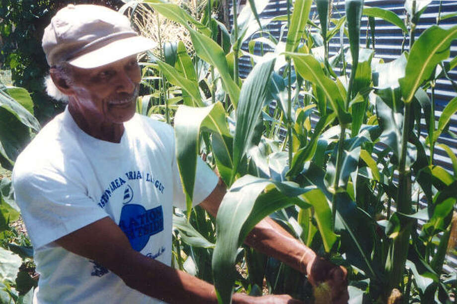 Community gardening Learn to grow in many ways Houston Chronicle