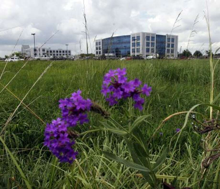 St. Luke's Episcopal Health System is planning to build a hospital on this vacant lot in Webster. St. Luke's Clear Lake Hospital is expected to have about 170 beds. Photo: JOHNNY HANSON, FOR THE CHRONICLE