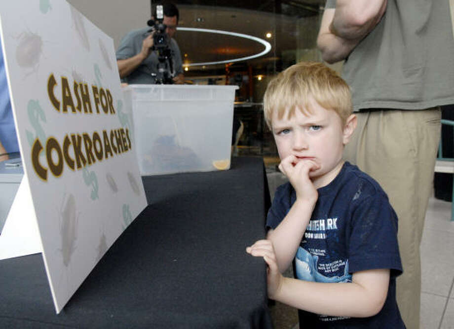 Jacob Odom, 3, looks away from the box of roaches at the Houston Museum of Natural Science cash for cockroaches campaign. Photo: Kim Christensen, For The Chronicle