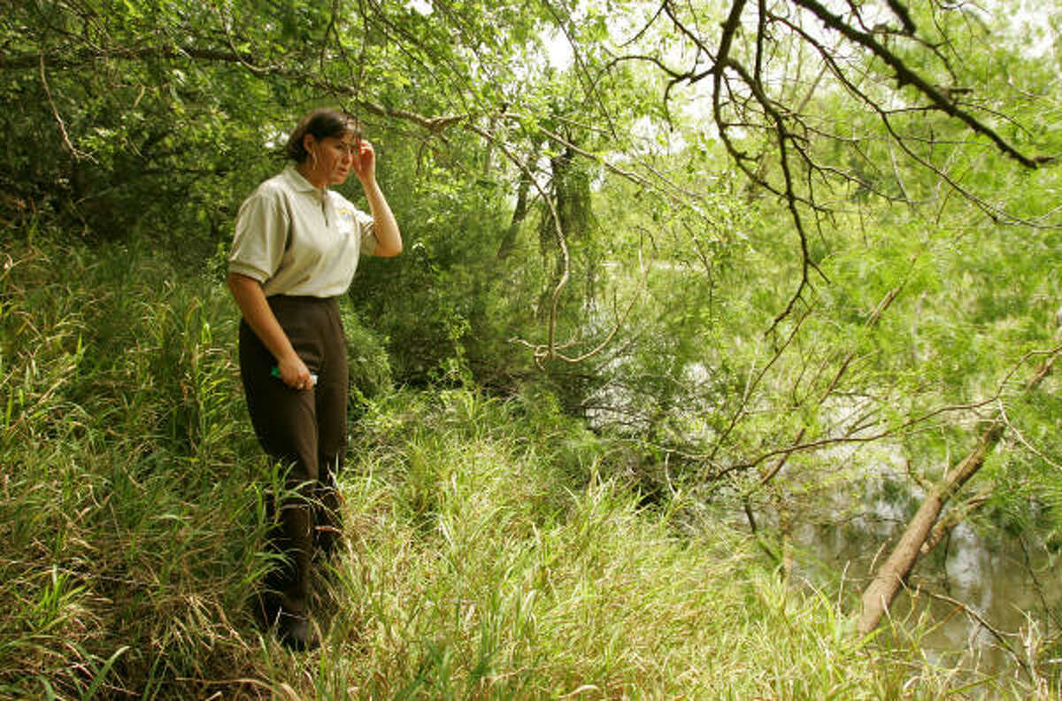 Nancy Brown of the U.S. Fish and Wildlife Service surveys the heavily vegetated banks of the Rio Grande in the Santa Ana National Wildlife Refuge during a tour of the park on May 8. Maps made public recently show the proposed border fence carving directly through the refuge.
